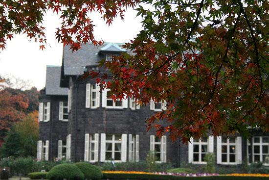 旧古河庭園の紅葉と、薔薇_f0030085_20265024.jpg
