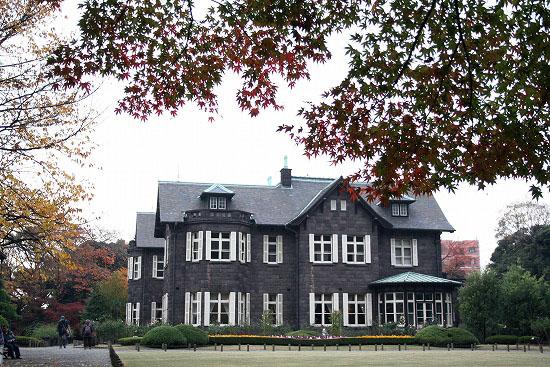旧古河庭園の紅葉と、薔薇_f0030085_20271215.jpg
