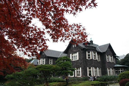 旧古河庭園の紅葉と、薔薇_f0030085_20274298.jpg