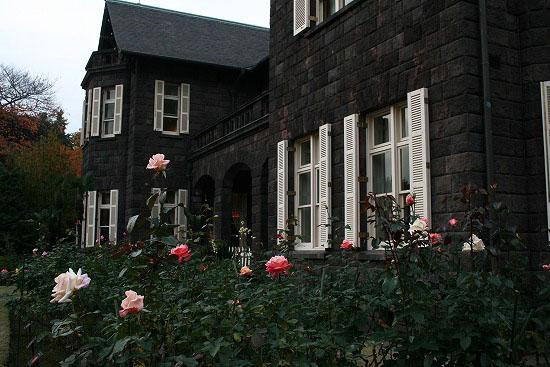 旧古河庭園の紅葉と、薔薇_f0030085_2032267.jpg
