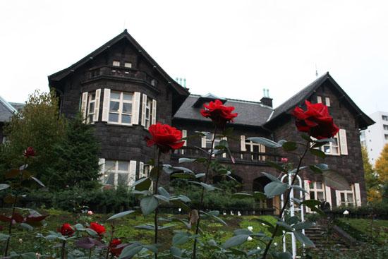旧古河庭園の紅葉と、薔薇_f0030085_2037169.jpg