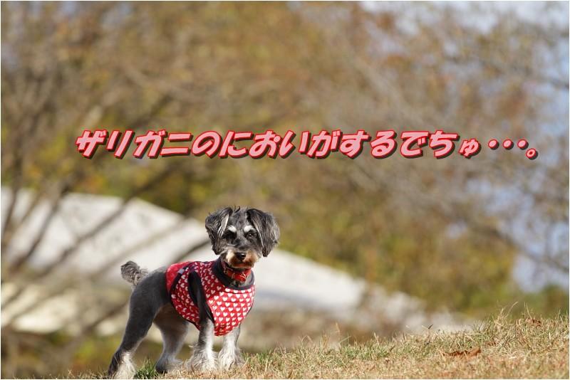 f0223295_22312159.jpg
