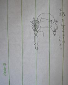 ひとこと_e0055098_10395689.jpg