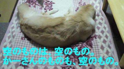 b0206300_1452381.jpg