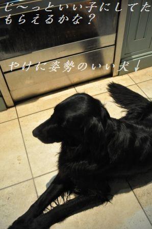 豚ひき肉とレタスのザーサイ炒め_d0104926_1455659.jpg