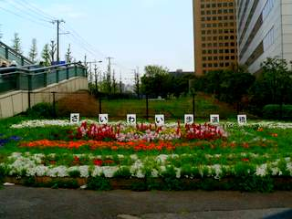 川崎いまむかし―歩いて学ぶ地域の歴史 講座風景_e0211937_1644271.jpg