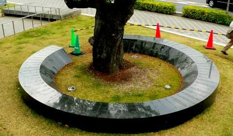 川崎いまむかし―歩いて学ぶ地域の歴史 講座風景_e0211937_16575366.jpg