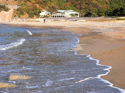 海浜センター・ビーチコミング講座2010_c0019338_917197.jpg