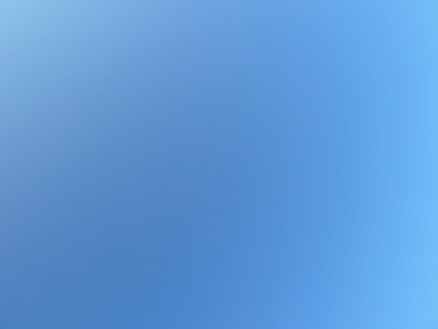b0190242_1135410.jpg
