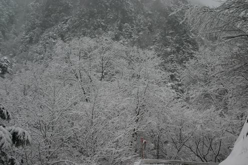 冬季間の営業_f0219043_3343641.jpg