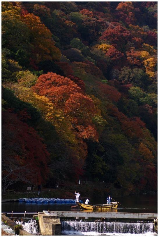 京都 嵐山界隈_e0063851_18371084.jpg