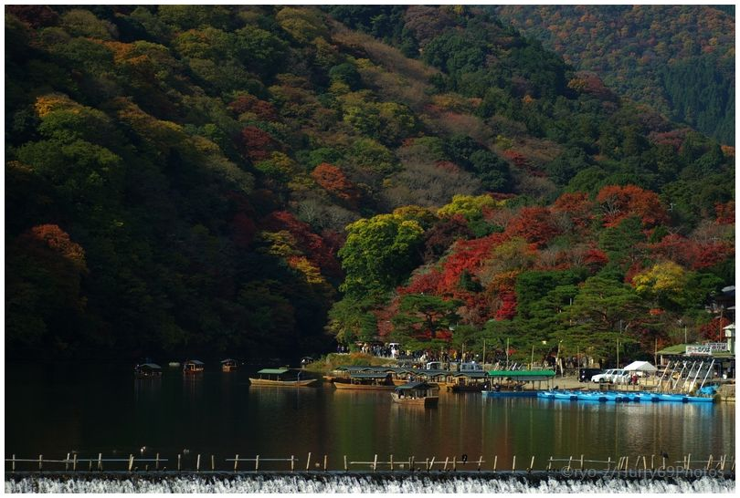 京都 嵐山界隈_e0063851_18371986.jpg