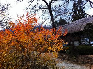 鬼怒川温泉旅行のiPhone photo_e0046675_23411633.jpg