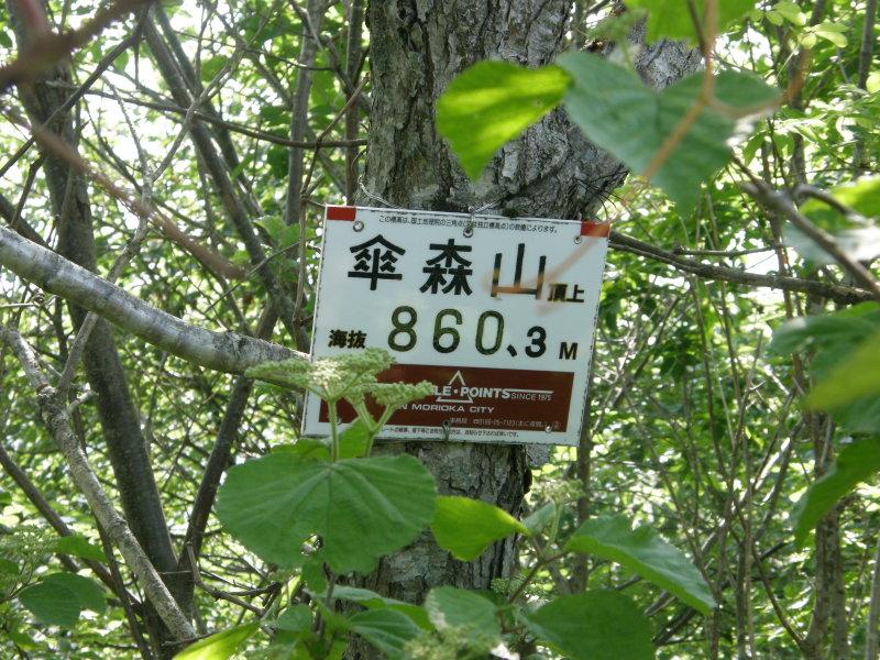 七つ森(其の二)_f0075075_1282225.jpg