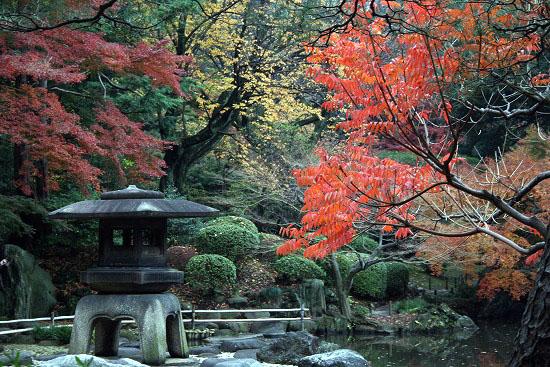 旧古河庭園の日本庭園_f0030085_21293431.jpg