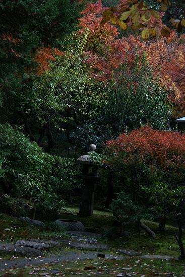 旧古河庭園の日本庭園_f0030085_21305274.jpg