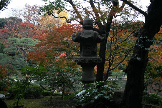 旧古河庭園の日本庭園_f0030085_21342054.jpg