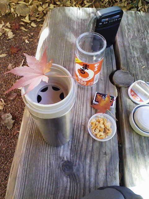 ■紅葉の中での、「一人宴会」風流なる楽しみ_c0061686_757633.jpg