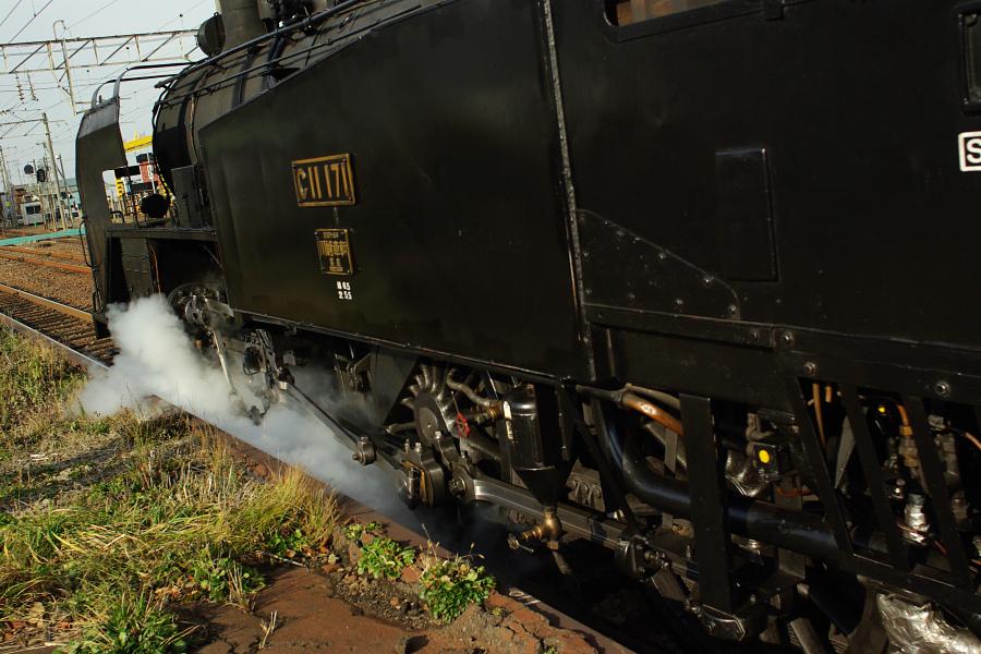 SL北海道鉄道130周年記念号_e0051186_14431539.jpg