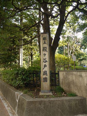 2010紅葉第二弾、殿ヶ谷戸庭園です、ここも見事\(^▽^)/_b0175688_1013513.jpg