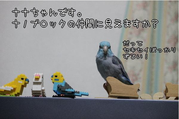 b0062090_171344.jpg