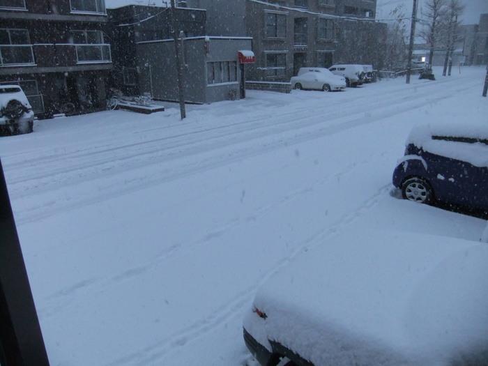 札幌 は雪が積もってます……_c0226202_656119.jpg