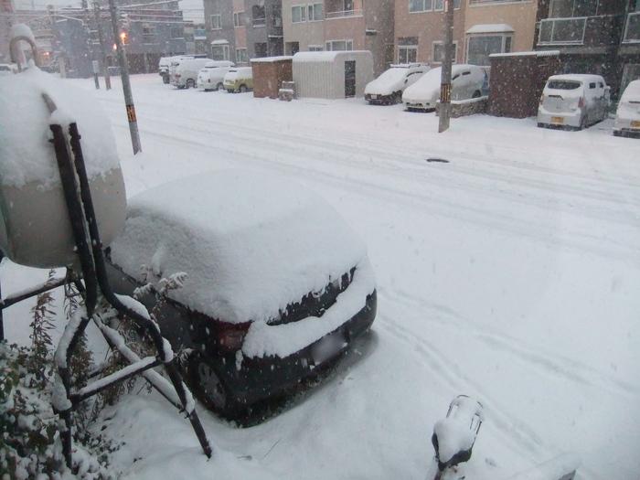 札幌 は雪が積もってます……_c0226202_6563210.jpg