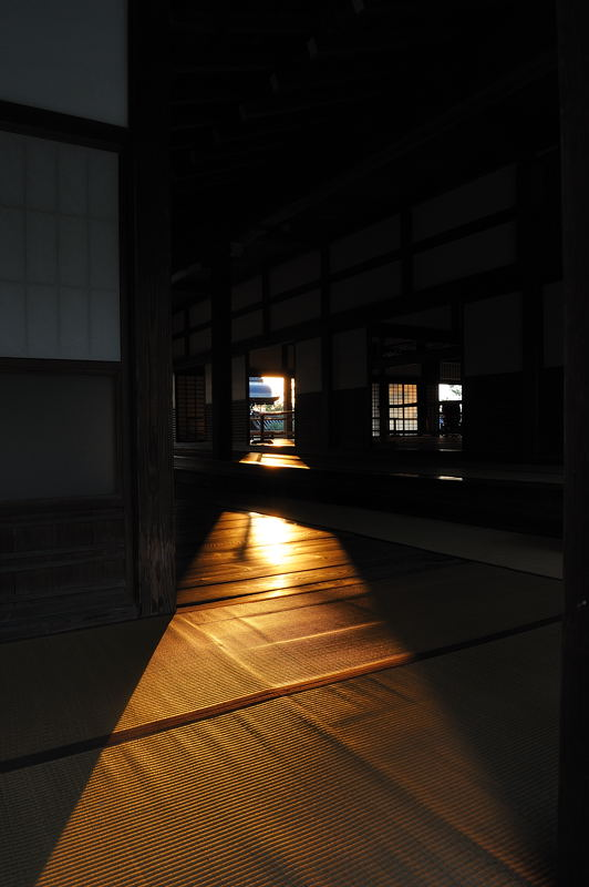 2010京都の紅葉 天龍寺_f0032011_19463365.jpg