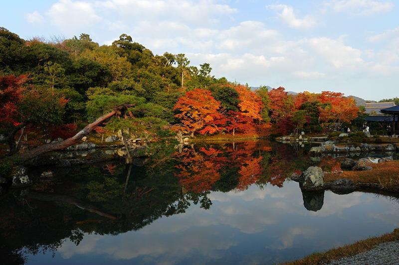 2010京都の紅葉 天龍寺_f0032011_19475514.jpg