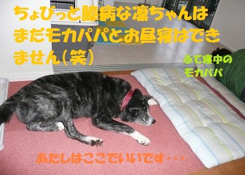 f0121712_9212645.jpg