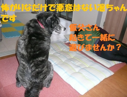 f0121712_9285467.jpg
