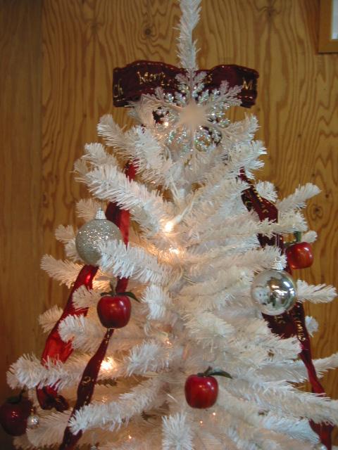 「クリスマス・ツリー」_a0120513_19505784.jpg