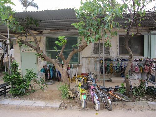 沖縄で出会った風景。_b0157216_2330269.jpg