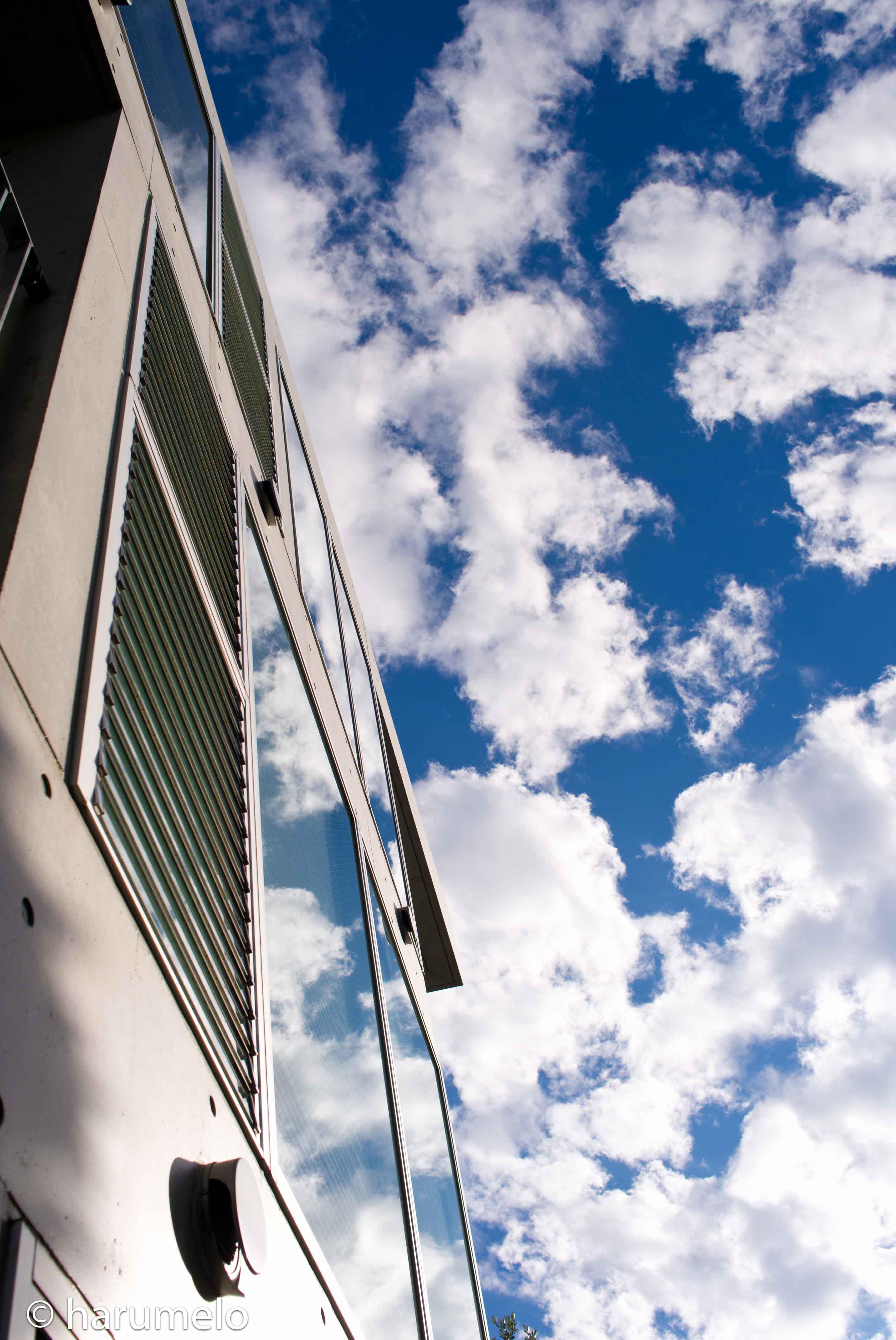 Edge of sky_e0016418_0592114.jpg