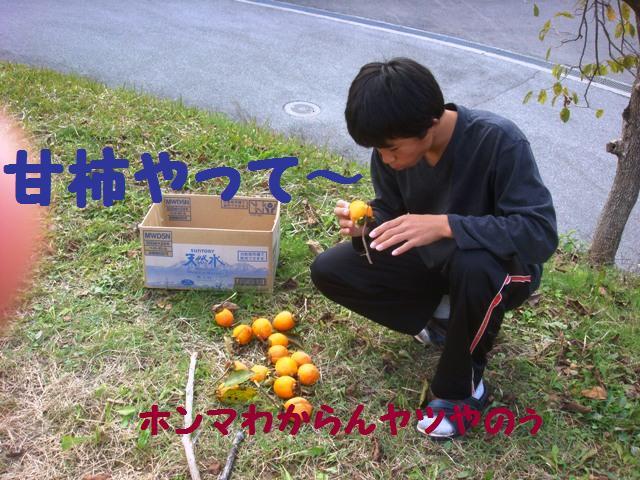 d0137326_19011.jpg