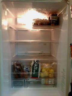 冷蔵庫Θ_b0204930_216223.jpg
