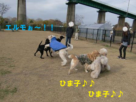 f0176830_18325168.jpg