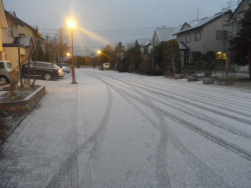冬でスノ~_e0026331_90435.jpg