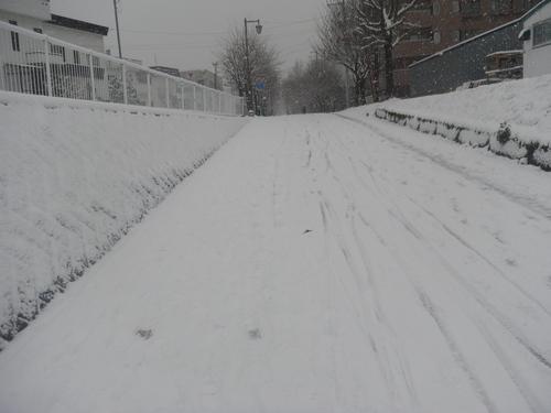 冬でスノ~_e0026331_931612.jpg