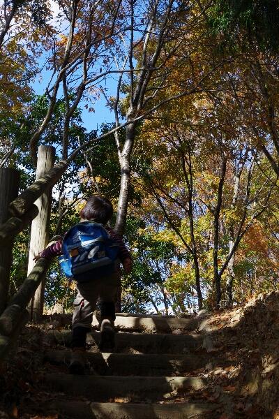 生駒山系縦走~_c0113733_23295769.jpg