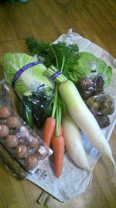 野菜…高っ!_d0051146_23332971.jpg