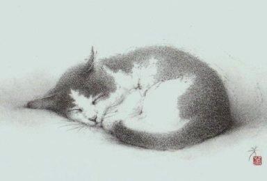 2011年 游デッサン室 カレンダー  『猫』_f0159856_92534.jpg