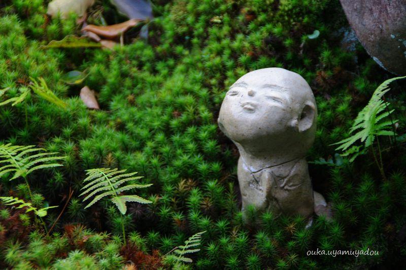 み~つけた・京都・秋の東福寺_a0157263_21202493.jpg