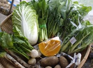 12月1週目 野菜セット不定期便のお知らせ(2010年最終回)_c0110869_13463138.jpg