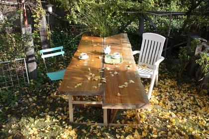 Loop 落ち葉の庭_a0155290_10332580.jpg