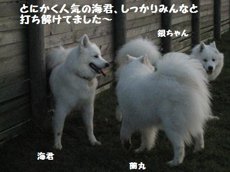 f0212597_83293.jpg