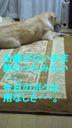 b0206300_17293515.jpg
