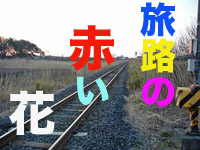 d0095910_6501785.jpg