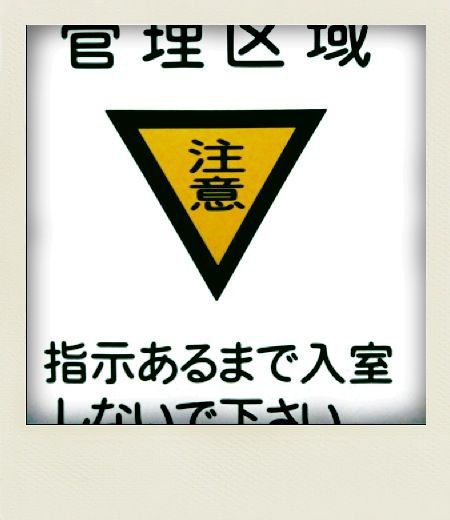 f0147018_033330.jpg