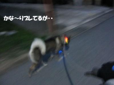f0143123_20112728.jpg